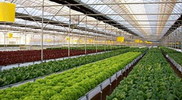 SUSTAINABLE FARMING SYSTEMS